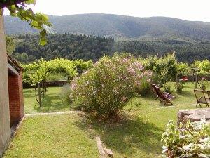 Casa Marta garden
