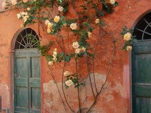 Casa Marta roses