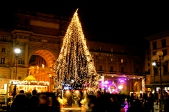 Christmas tree in Florence- Piazza Republica